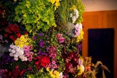 21. Kärntner Blumenolympiade 2018-141