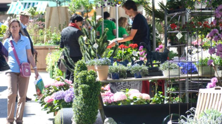 In den letzten Jahren war der Blumenmarkt immer gut besucht.