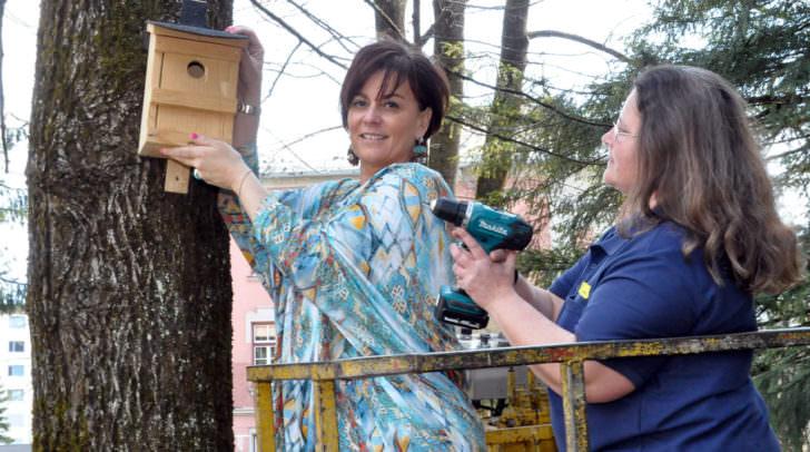 Vizebürgermeisterin Mag.a Dr.in Petra Oberrauner (links) mit Corinna   Spasojevic, Mitarbeiterin des Stadtgartens, bei den Nistkästchen für Blau- und   Kohlmeisen