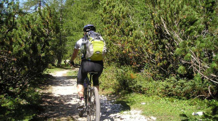 mountain-bike-175217_960_720