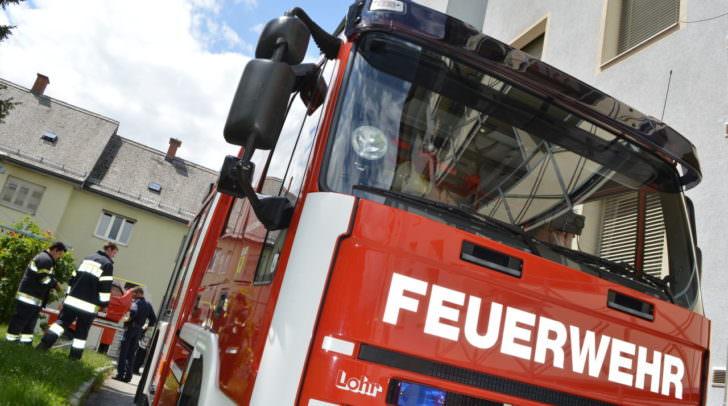 Insgesamt 12 Fahrzeuge und 100 Mann waren im Einsatz und konnten das Feuer bändigen