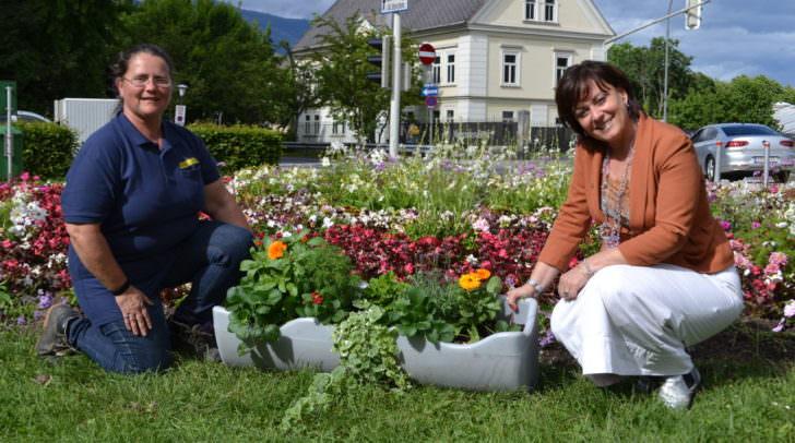 Vizebürgermeisterin Dr.in Oberrauner mit Stadtgarten-Mitarbeiterin Corinna Spasojevic im Stadtpark vor einem Blumen-Ensemble und einem Exemplar der beim CCV verwendeten Kräuterkistln.