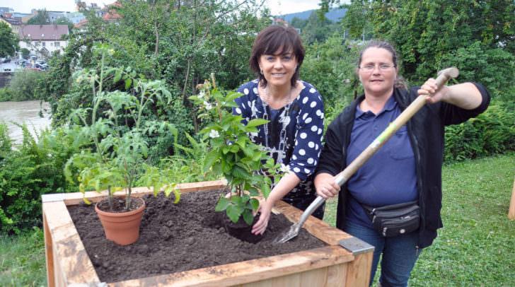 Stadtgartenreferentin Vizebürgermeisterin Petra Oberrauner mit Gartenmeisterin Conny Spasojevic (Stadtgarten):
