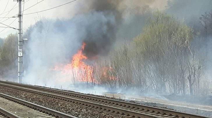 Der Brand konnte von den Feuerwehren unter Kontrolle gebracht werden.