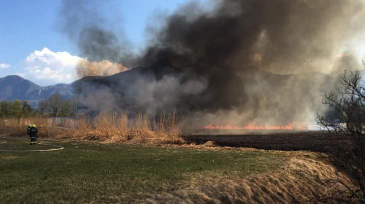 Massive Rauchschwaden die beim Schilfbrand aufstiegen.