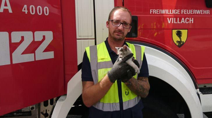Die Katze konnte unversehrt geborgen und an das Villacher Tierheim übergeben werden.