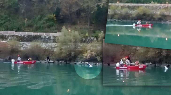 Die Möwe wurde mit einem Rettungsboot an Land gebracht