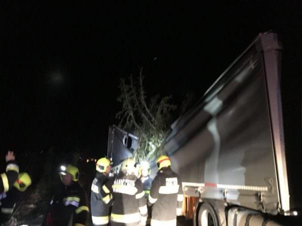 Ein LKW wurde von einem Baum getroffen.