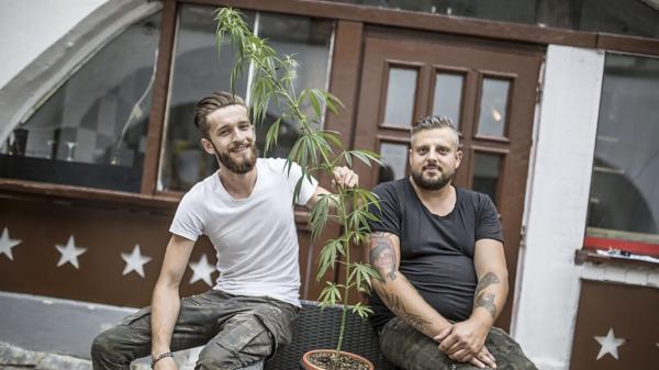 Haris Felić und Andreas Franz, Inhaber des CBD-Cartells
