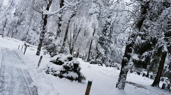 Am Vormittag war der Waldfriedhof gesperrt.