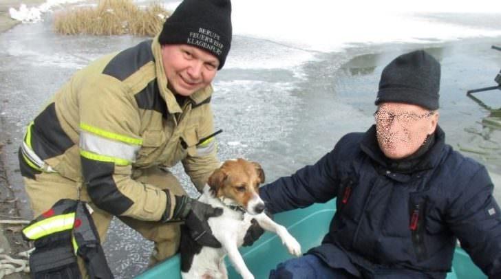 Die Freude ist groß! Hund und Besitzer sind wohlauf ans Ufer gelangt!