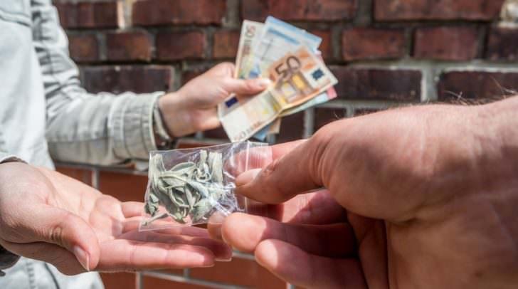 Knapp ein halbes Kilo Cannabiskraut wurde in der Wohnung, neben weiteren Suchtgiften und Verpackungsmaterial, gefunden.