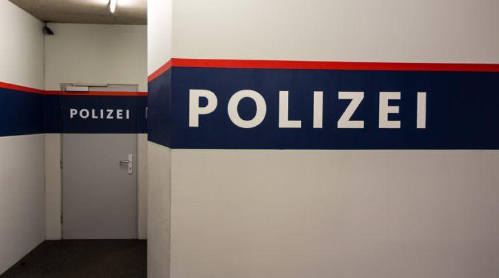 Der Klagenfurter zeigte sich bei der Festnahme zum Großteil seiner Taten geständig und wurde in die Justizanstalt Klagenfurt eingeliefert.