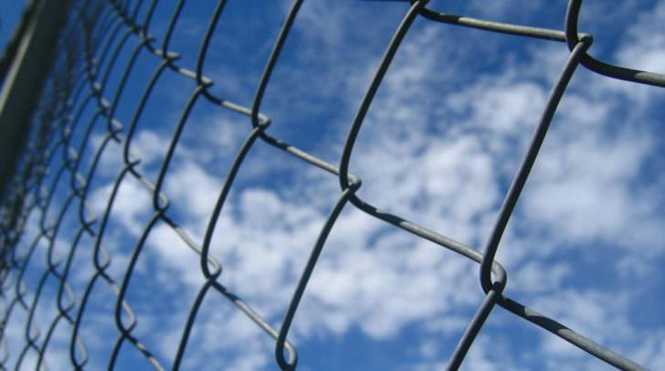 Die unbekannten Täter schnitten einen Loch in einen Maschendrahtzaun und gelangten so auf das Anwesen in Feistritz.