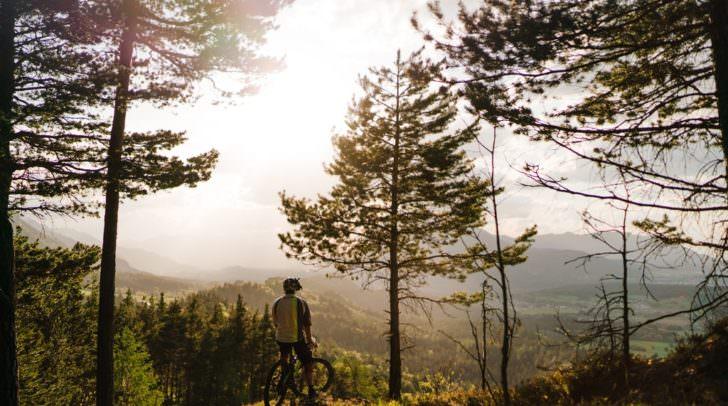 Gute Aussichten für Mountainbiker: Am Faaker See entsteht mit großem planerischem Weitblick und hoher Akzeptanz unter allen Beteiligten eine völlig neue, naturnahe Mountainbike-Infrastruktur.