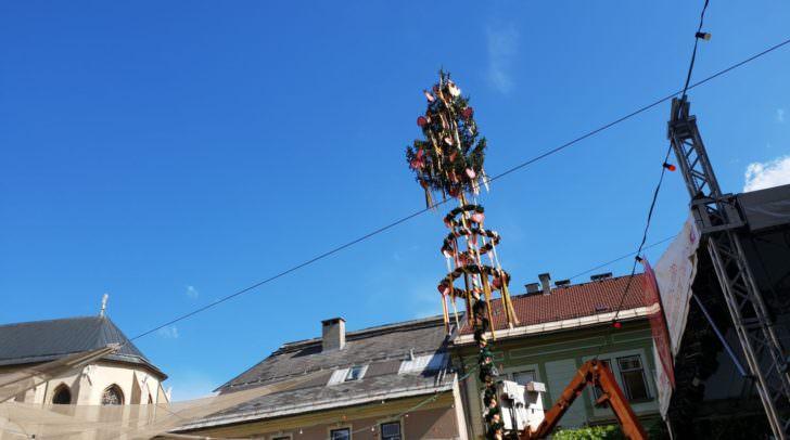 Seit heute, Donnerstag, steht der Kirchtagsbaum am Villacher Rathausplatz.