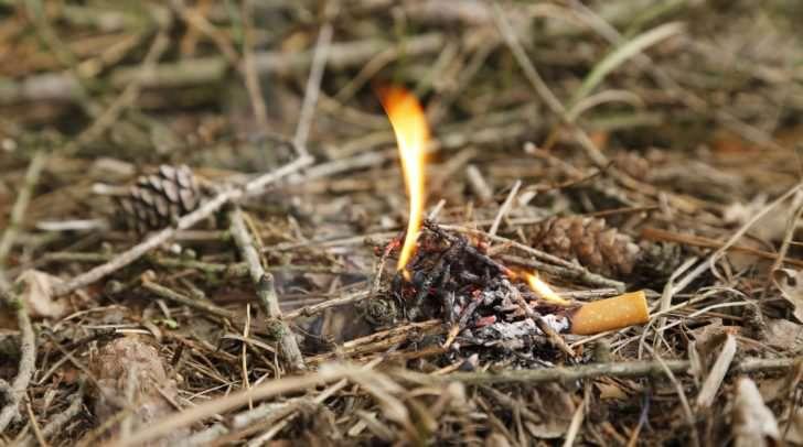 Bei trockenen Witterungsverhältnissen, wie derzeit im Bezirk Spittal an der Drau, breiten sich Waldbrände oft rasend schnell aus.