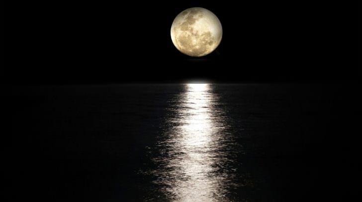 Nicht nur der 13. des Monats ist ein ganz besonderer Tag, auch eine Vollmondnacht hat so manch mystisches Geheimnis zu bieten.