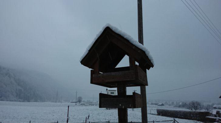 Der erste Schnee bedeckt Felder und Wiesen. Auf ein Winter Wunderland müssen wir jedoch noch etwas warten.
