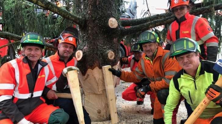 Der Christbaum am Hauptplatz wurde heute von den Mitarbeitern des Stadtgartens aufgestellt.