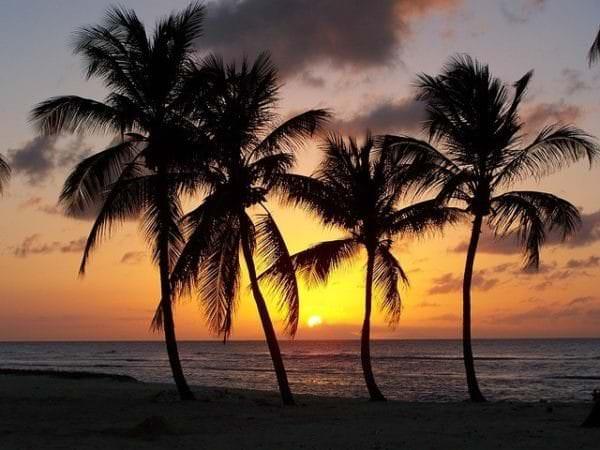 Karibisches Flair, hier auf Guadeloupe, genießen Kreuzfahrer besonders gerne.