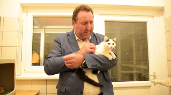 Auch das Wohl der Katzen wurde gewissenhaft geprüft!