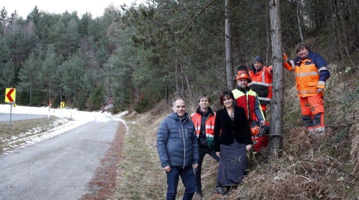 Baumschlägerungsarbeiten entlang der Bundesstraße Richtung Drobollach.r