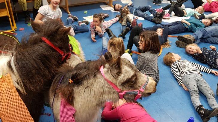 Die Kinder durften gemeinsam mit den Therapiepferden die Schulbank drücken.