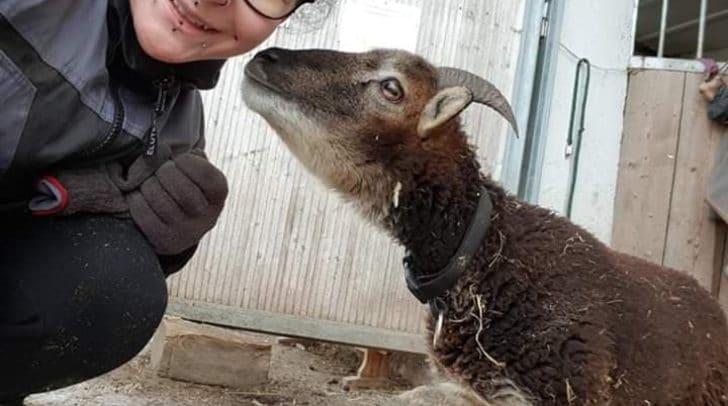 Meggele lebt seit einigen Monaten glücklich am Ponyhof Klipp Klapp