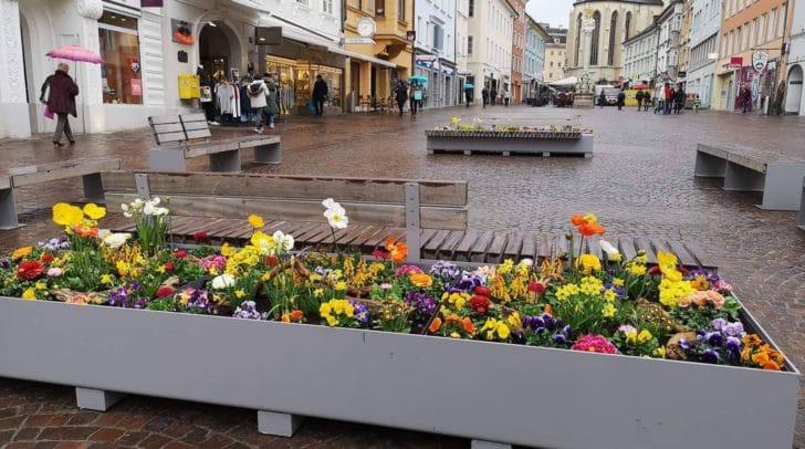 Mit Blumen und Schildern hätte es heute einen gemeinsamenFototermin in der Innenstadt geben sollen. Nicht alle kamen.