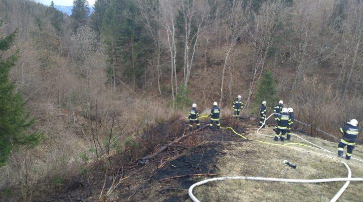 Durch das schnelle Eingreifen der Feuerwehr konnte ein größerer Schaden vermieden werden.