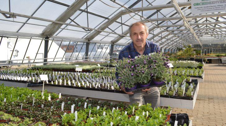Geschäftsführer Michael Schludermann vom Blumenhof Villach bietet einen erfolgreichen Lieferservice an.