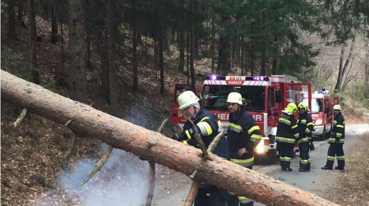 Die Feuerwehr wurde nach dem Sturm zu mehreren Einsätzen gerufen.