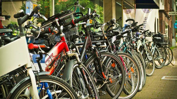 Radfahren auf Forststraßen ist nicht überall erlaubt. Viele Grundeigentümer verbieten das Befahren ihrer Wege, da sie bei Unfällen haften.