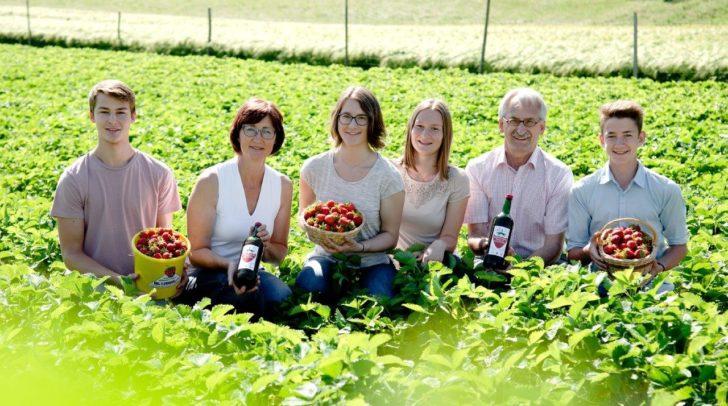 Frische Erdbeeren gibt es heute ab 14 Uhr im Lagerhaus Feistritz an der Drau.