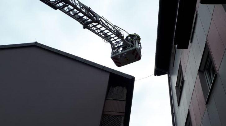 Mit der Drehleiter holten die Kameraden das Tier vom Dach.