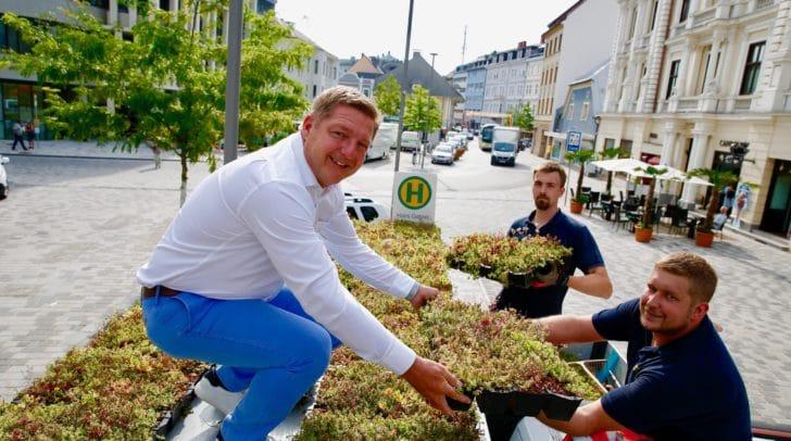 Bürgermeister Günther Albel und Mitarbeiter des Villacher Stadtgartens begrünten bereits die Bushaltestelle am Hans-Gasser-Platz