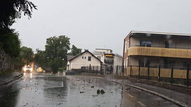 Die starken Sturmböen haben Äste auf die Straße geschleudert.