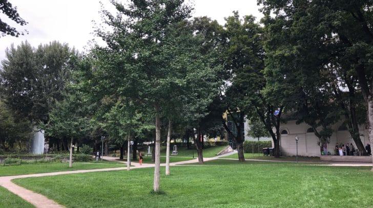 Die Pressekonferenz fand im neu begrünten Goethepark statt.