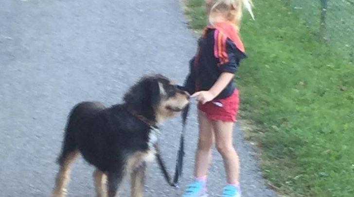 Der 11 Jahre alt Hund Nelly bereichert das Leben der Familie.