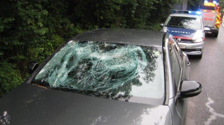 Der Ast stürzte direkt auf das fahrende Auto.