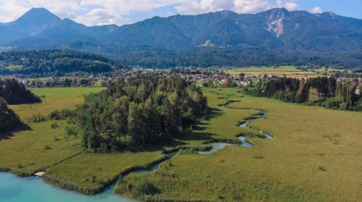 Der Schilfmäander am Faaker See ist ein wahres Naturparadies.