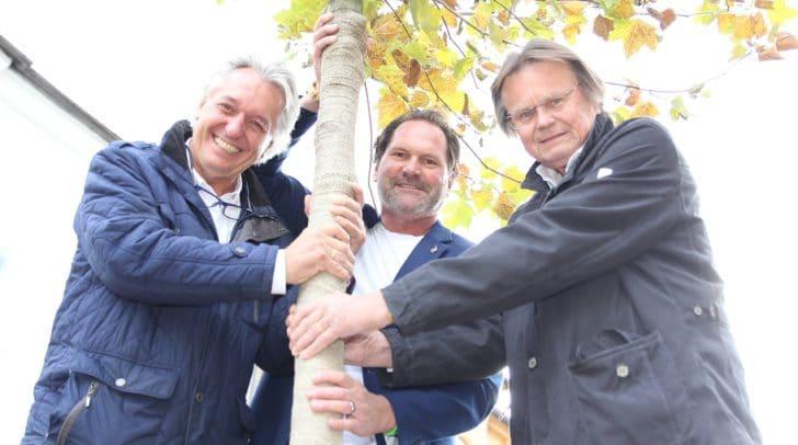 Baumpaten: René Tarmastin, Herbert Moser und Karl Hubel (von links) vom Kiwanis-Club Villach.