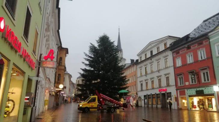 Der Baum steht!