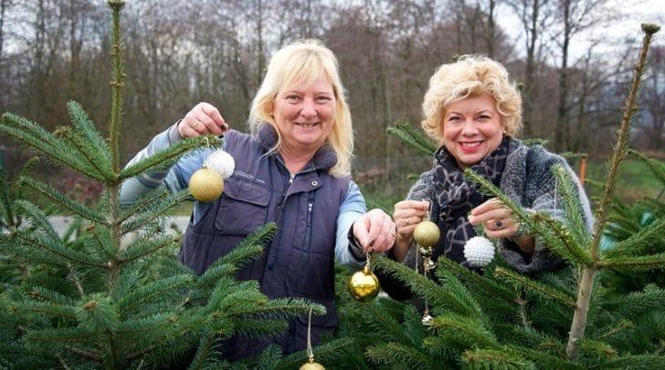 Vizebürgermeisterin Irene Hochstetter-Lackner und Beatrice Dalecky vom Stadtgarten bei den lebenden Weihnachtsbäumen.