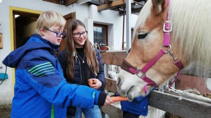 In der Mensch-Tier-Werkstatt soll Kindern individuell geholfen werden und sie sollen im Umgang mit den Tieren mehr Selbstbewusstsein entwickeln.