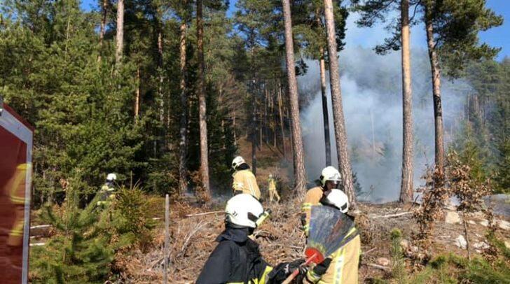 In Zusammenarbeit mit der Berufsfeuerwehr Klagenfurt und der FF Keutschach konnten die Einsatzkräfte der FF Viktring - Stein/Neudorf den entstehenden Waldbrand schnell unter Kontrolle bringen.