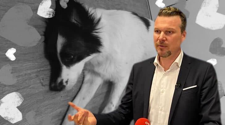 Klagenfurts Vizebürgermeister Germ will mit einer Prämie sachdienliche Hinweise zur Ergreifung des Täters bekommen.