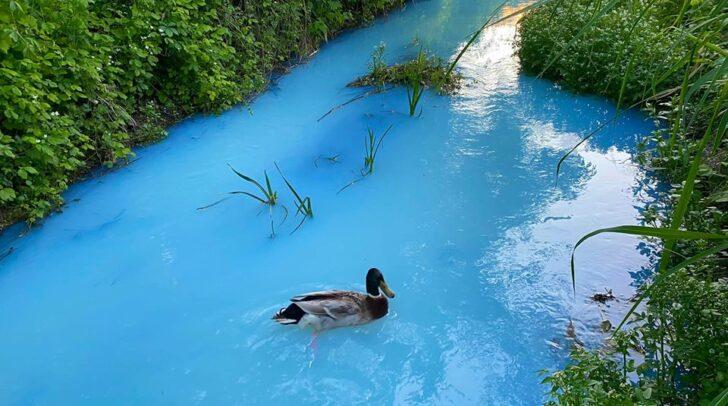 Aktuell ist der Russenkanal in Klagenfurt türkisblau.