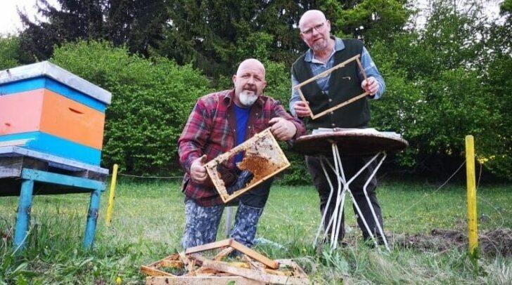 Joachim Pipp und Michael Glantschnigmitten im Bienenstock-Chaos. Vermutet wird, dass ein Bär der Übeltäter war.